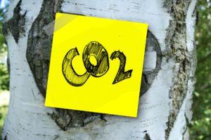 Когда задача стоит датчик СО2 купить подходящий