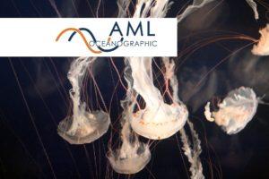 AML Oceanographic оборудование для океанологии